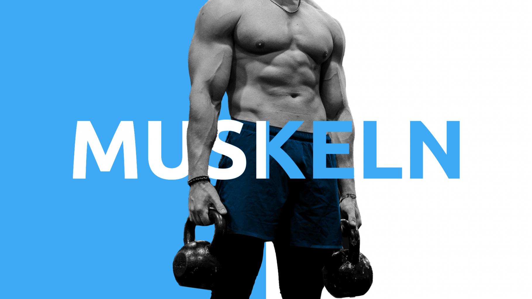 Muskelaufbau 13 Wochen Projekt